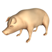 Pig Low Poly