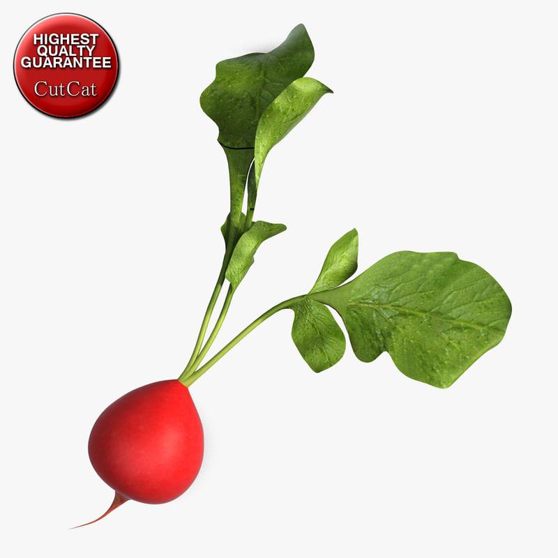 3ds max radish vegetable