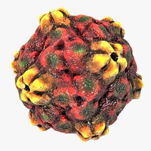 max ringspot virus