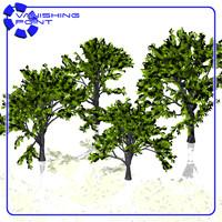 set trees 3d 3ds
