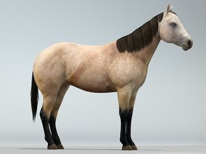 3ds realistic horse