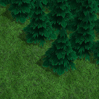 Low Poly Fir Tree