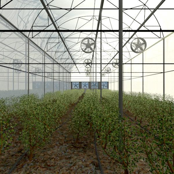 3d greenhouse plants fans model