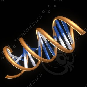 3d dna double-helix