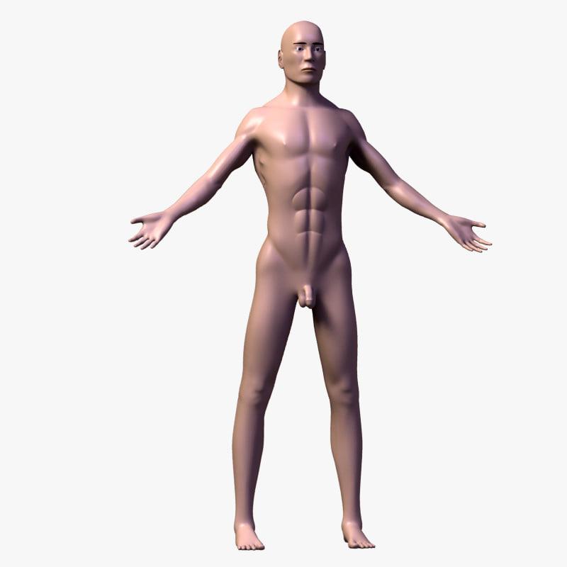 lwo human male body anatomy