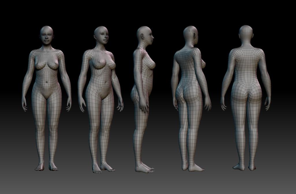 3d woman body model