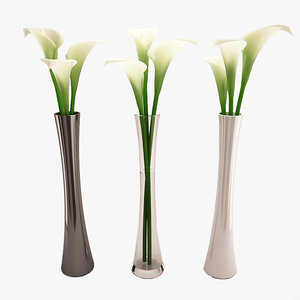 3d calla lily flower tall