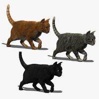 cats fur animations 3d model