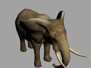 3d model elephant animation