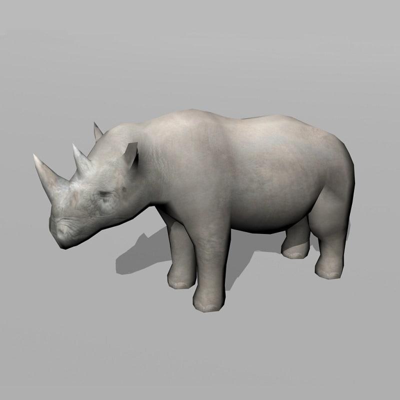 3d rhinoceros rhino