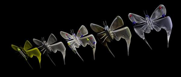 free 3ds model butterflies bombs