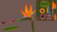 3d birds paradise flowers model