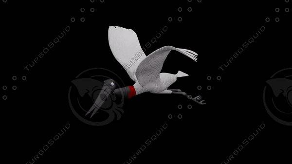 3d jabiru bird symbol