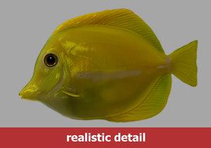 yellow tang fish obj
