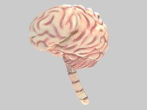 3dsmax brain uvs