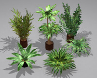 Potted Plant Pack (7 potted plant)