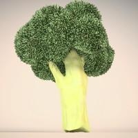 broccoli 3d c4d