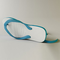 3d havaianas sandals model