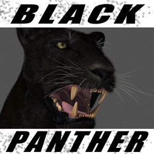 panther animation 3d max