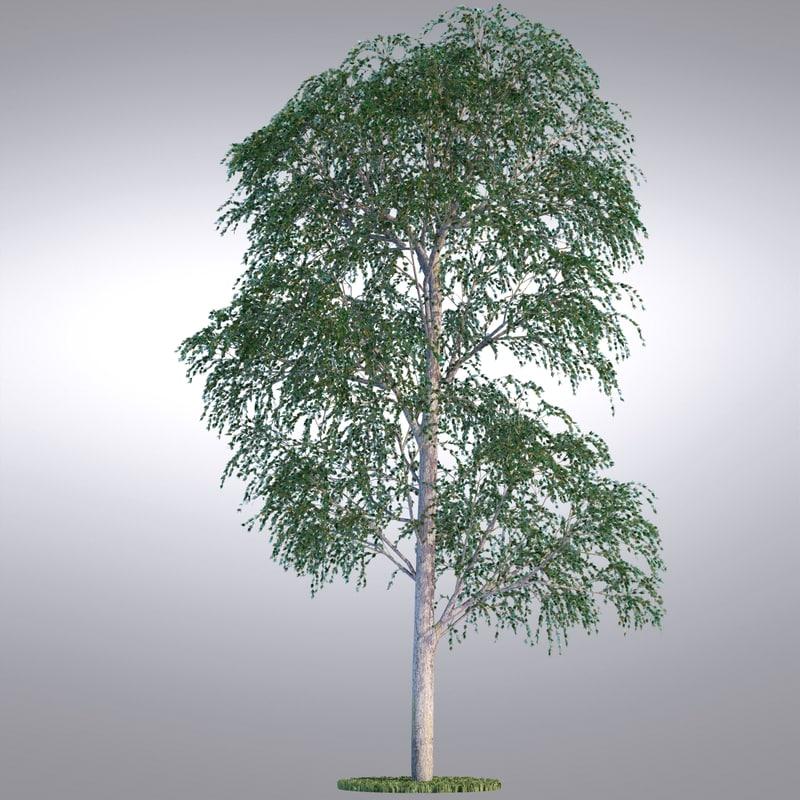 hi realistic series tree 3d model