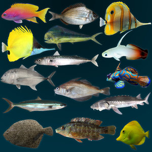 3ds max marine fish anthias bream