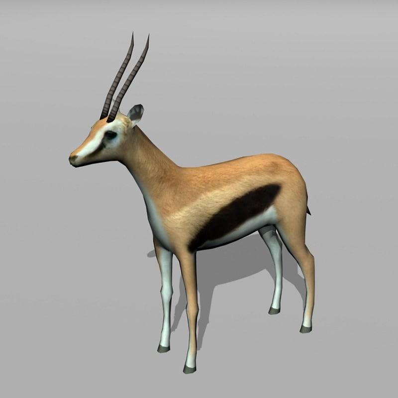 thomson gazelle 3d model
