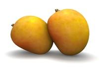 3d mango trees model