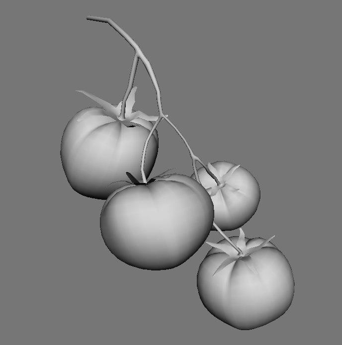 3d model tomato stem
