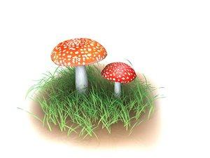 amanita muscaria mushroom 3d max