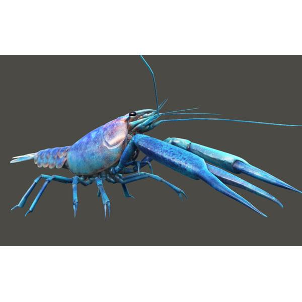 lobster crayfish 3d model