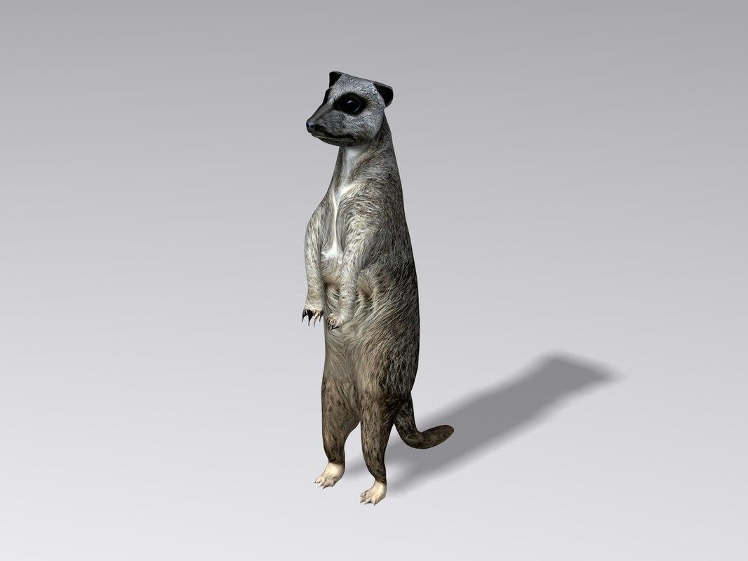 3ds max meerkat