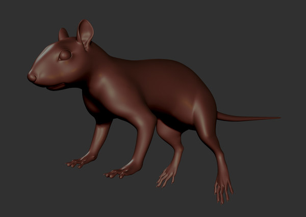 animal squirrel mouse 3d model