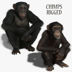 3d chimps rigged fur