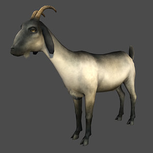 maya goat