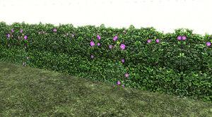 3d model plant hedge