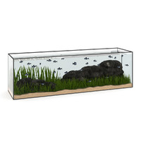 3ds max aquarium rectangular large