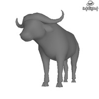 Low Poly Buffalo