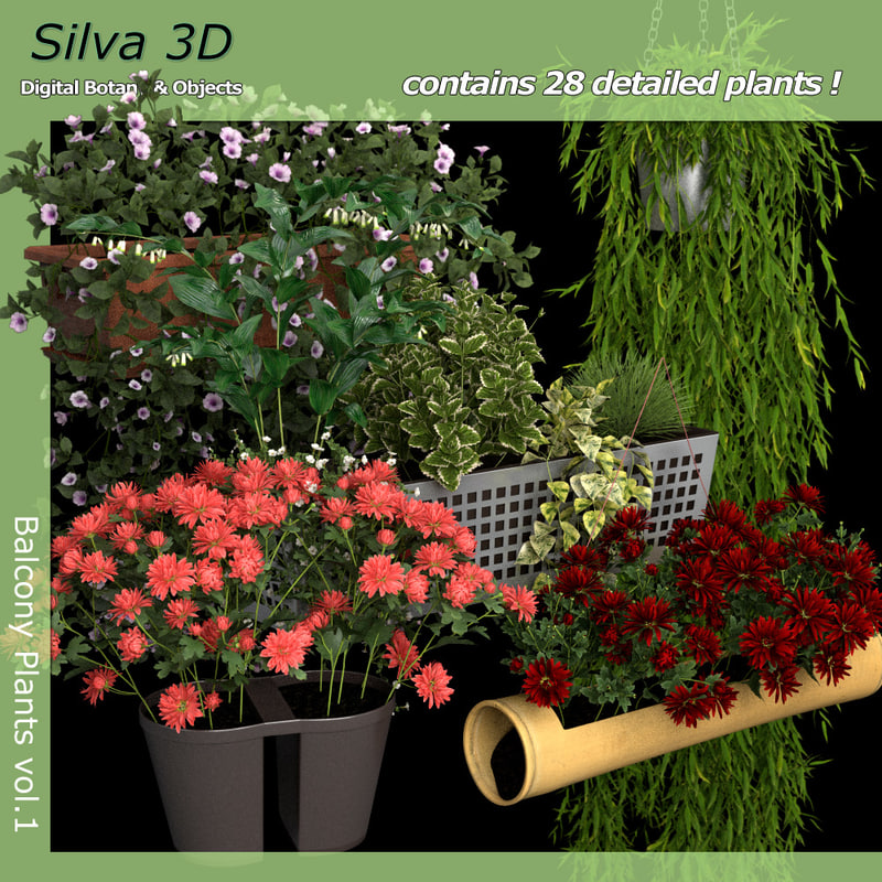 flowers plants balcony 3d model