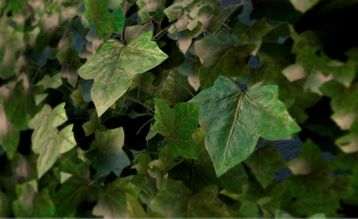 ivy wall 3d model