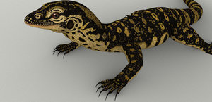 monitor varanus lizard 3d model