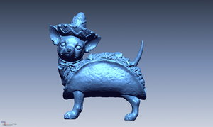 chihuahua takko 3d model