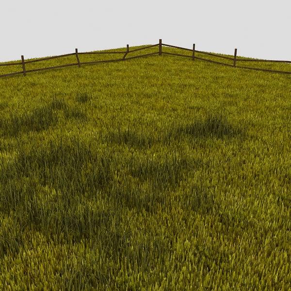 3dsmax grass field