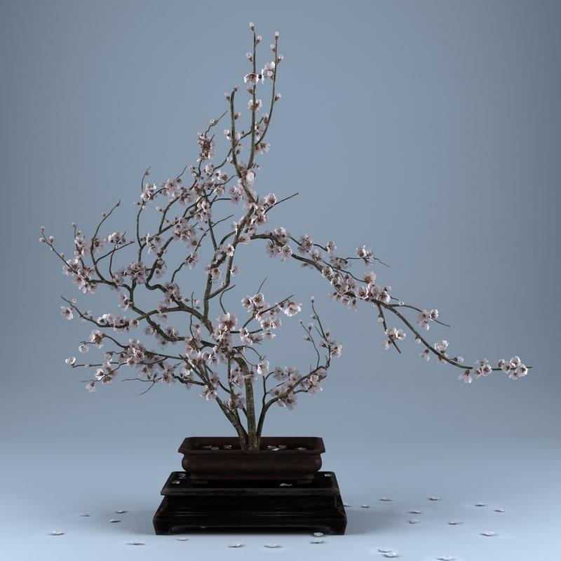 3d ikebana flower model