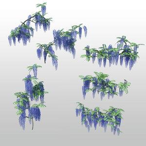 3d flowers wisteria