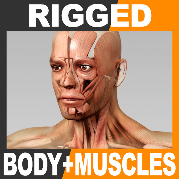 rigged human male body ma