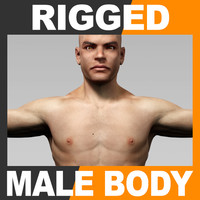 Rigged Human Male Body