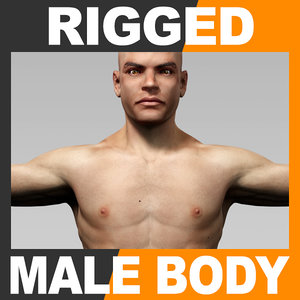 3d rigged human male body model