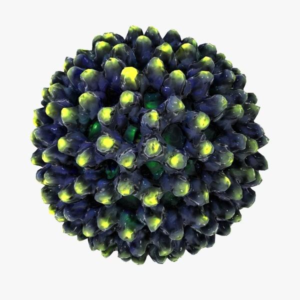 virus dna biology 3d model