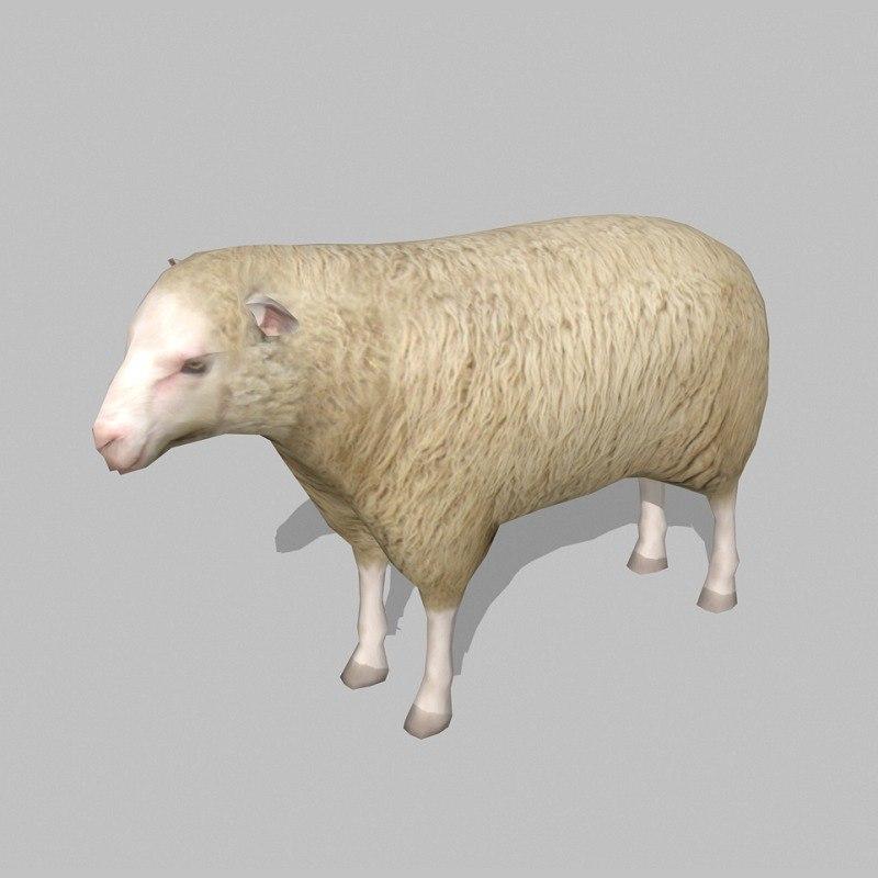 sheep uv max