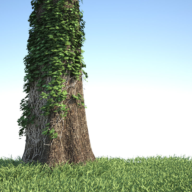 tree trunk covered ivy 3d model